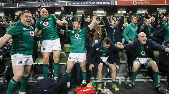 Ireland players celebrate at the final whistle against New Zealand