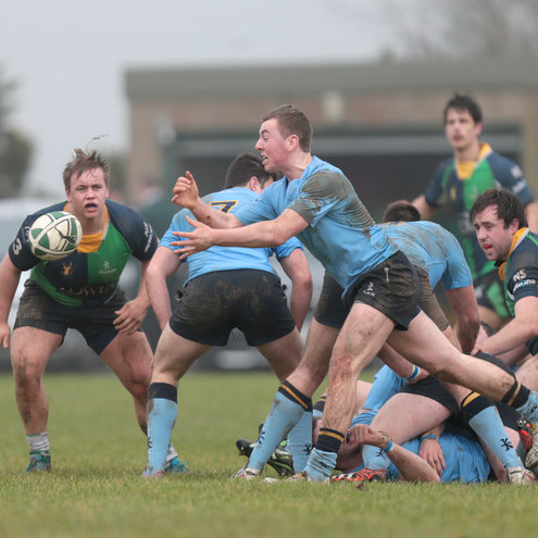 UCD's Jamie Glynn throws a pass