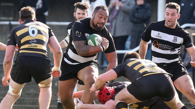 Old Belvedere back rower Leo Auva'a