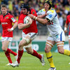 Munster Fall Short In Montpellier