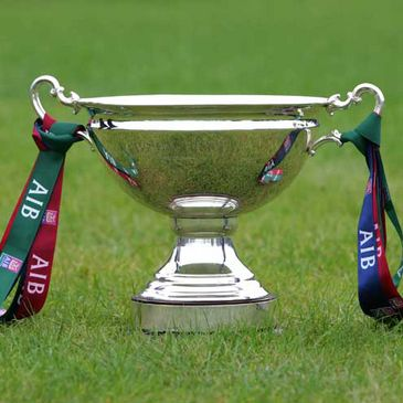 A close-up view of the AIB Cup trophy
