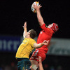 Munster lock Billy Holland gets up to claim a lineout ball, beating Australia's Dean Mumm to it