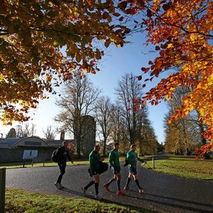 Ireland Squad Training Session At Carton House, Maynooth, Tuesday, November 12, 2013