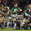 Harlequins' solid defence frustrated Connacht time and again, and winger Brian Tuohy was starved of space