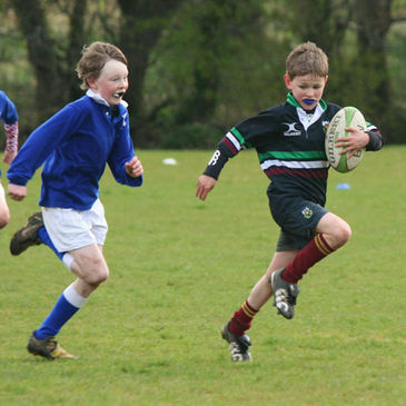 Mini and youth rugby are well catered for at DLSP