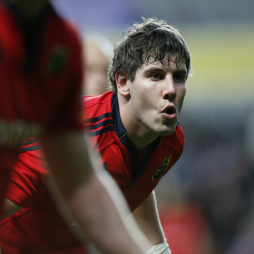 Munster back rower David O'Callaghan