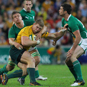 Wallaby flanker David Pocock in action against Ireland