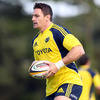 David Wallace will have to wait to make his seasonal bow for Munster, having been ruled out of the Dragons game