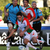 Biarritz's Dimitri Yachvili swoops on a loose ball. The game marked the French international's 50th Heineken Cup start