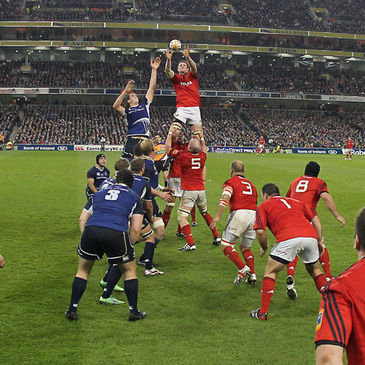Munster's Donnacha Ryan wins a lineout against Leinster
