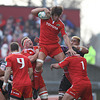 Lock Donncha O'Callaghan secures lineout possession for Munster during the opening minutes of the game