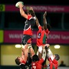Second row Ed O'Donoghue secures lineout possession for the runaway winners at Ravenhill