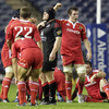 The Munster players, including replacements Ronan O'Gara and Peter O'Mahony, are pictured just after the final whistle