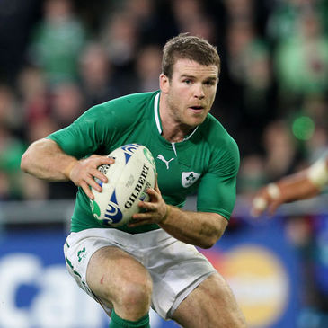 Gordon D'Arcy was one of Ireland's star performers against Italy