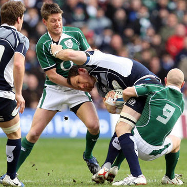 Ronan O'Gara and Peter Stringer tackle Scotland's Graeme Morrison