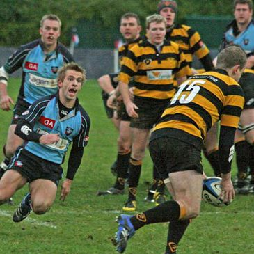 Young Munster and Belfast Harlequins are to meet in the Division Two play-offs