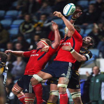 Munster locks Mick O'Driscoll and Donncha O'Callaghan compete for the ball with Wasps' Simon Shaw
