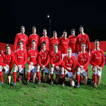 The Wales team are pictured before last Wednesday's clash with Ireland