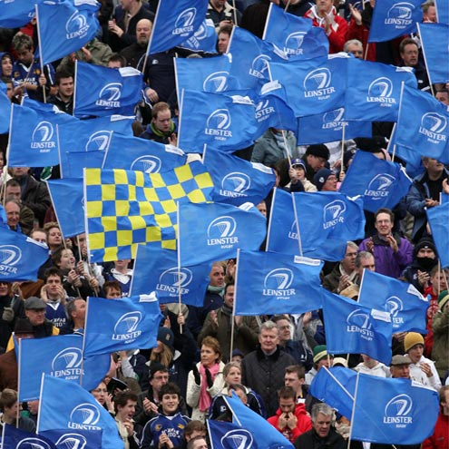 The Leinster fans at the RDS