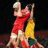 Munster lock Ian Nagle rises high to claim a lineout ball, ahead of Australia's blindside flanker Scott Higginbotham
