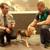 Jamie Heaslip made a new friend in this customs dog at Queenstown Airport but hey, he's no Jay-Z!