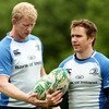 Team captain Leo Cullen and Eoin Reddan were members of the Leinster team that lost last season's semi-final to Toulouse (26-16)