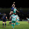 The result saw Leinster gain revenge on Benetton Treviso for a shock defeat at Stadio di Monigo earlier in the season