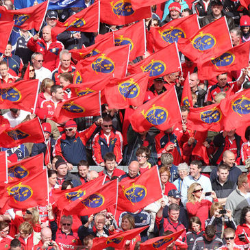 The Munster supporters