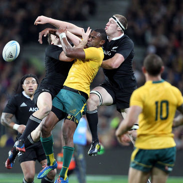 New Zealand beat Australia in the Bledisloe Cup at the weekend