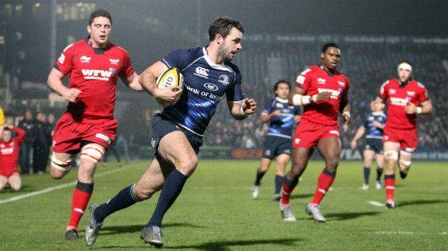 Leinster Sign Morris On Short-Term Deal