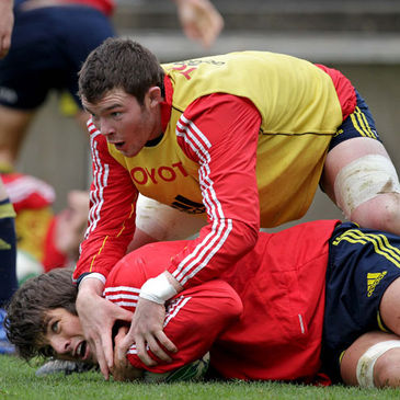Munster's Donncha O'Callaghan and Peter O'Mahony
