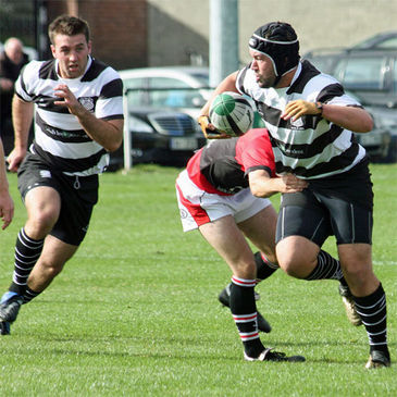 Old Belvedere are a point ahead of Young Munster