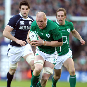 Paul O'Connell in action for Ireland against Scotland