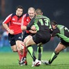 Munster captain Paul O'Connell is a fearsome sight as he charges at Montauban's Jean-Philippe Viard