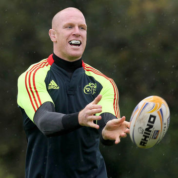 Munster second row Paul O'Connell