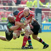 Paul O'Connell looks for a team-mate to offload to as Munster try to punch some holes in the Harlequins' defence