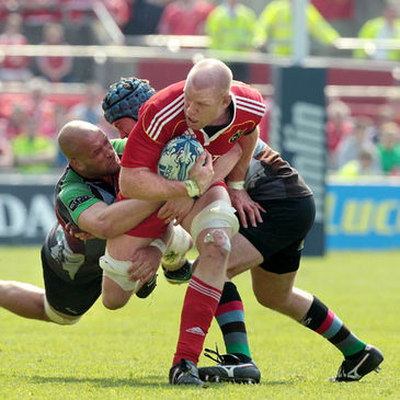 Munster's Paul O'Connell in action against Harlequins