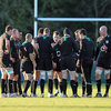 The upcoming Tests against South Africa and Argentina are crucial as Ireland aim to improve their ranking ahead of next month's Rugby World Cup pool draw