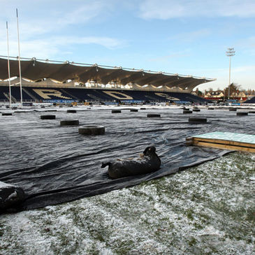 The pitch as it looks today at the RDS
