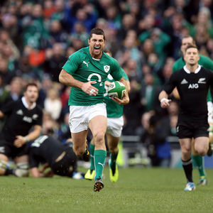 Ireland 22 New Zealand 24, Aviva Stadium, Sunday, November 24, 2013