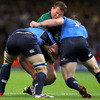 Leinster's Sean O'Brien and Cian Healy get to grips with Northampton Saints hooker and captain Dylan Hartley