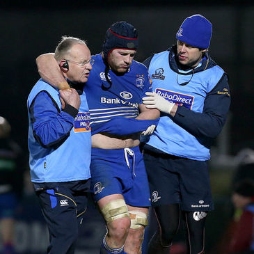 Leinster back rower Sean O'Brien