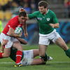 Gordon D'Arcy prepares to tackle Shane Williams, the scorer of Wales' opening try after just three minutes