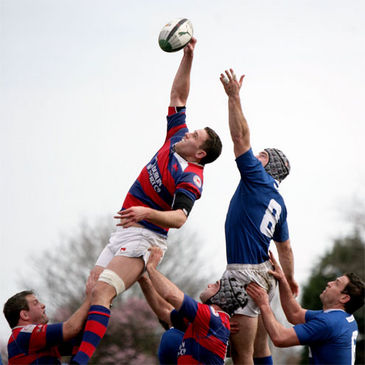 Clontarf captain Simon Crawford wins a lineout