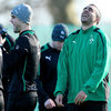Conor Murray and Simon Zebo, both Test debutants in the last 17 months, have made impressive transitions to international rugby