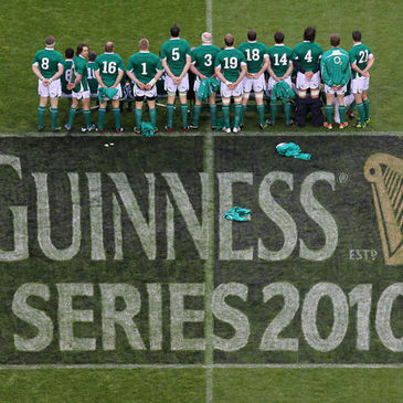 The Ireland squad line up for photos on the pitch