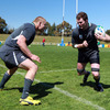 Tom Court prepares to tackle Donnacha Ryan, who is itching to make his World Cup debut this weekend after two starts during the warm-up games