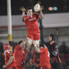 Flanker Tommy O'Donnell is well-supported as he knocks a lineout ball down towards the fit-again Tomas O'Leary