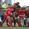 Prop Tony Buckley protects the ball as the Munster forwards try to drive the Ospreys pack back