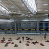 The Ireland squad trained at the ASB Indoor Sports Centre in Wellington. The session was moved from Rugby League Park due to the wet conditions